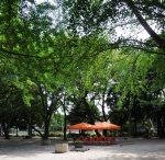 板橋平和公園バーベキュー♪