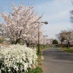 ☆ 舎人公園バーベキュー場について ☆