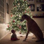 ☆ Christmas ☆
